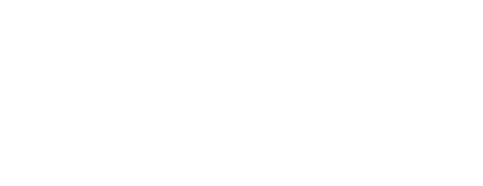 logo Rolimax